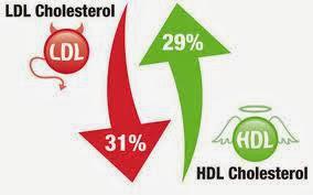 Solusi Mengatasi Kolesterol Tinggi