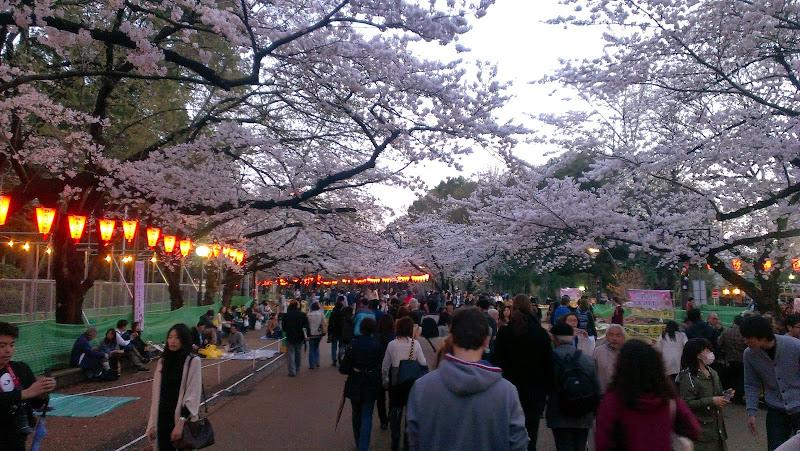 2014 Japan - Dag 1 - marjolein-2014-03-30%2B18.06.17-0002.jpg