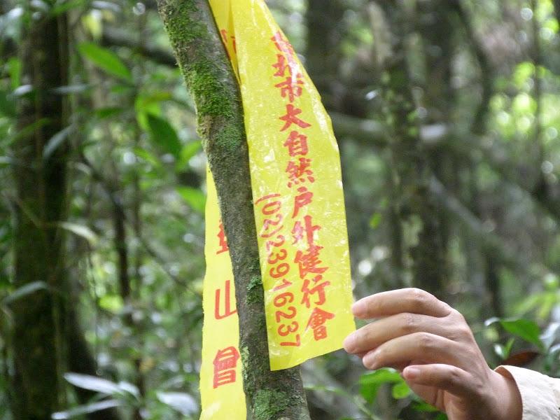 Notre ami Mr Wang a attaché ce signe, preuve qu il est passé par là