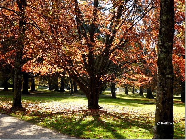Hellbrunner Park 1