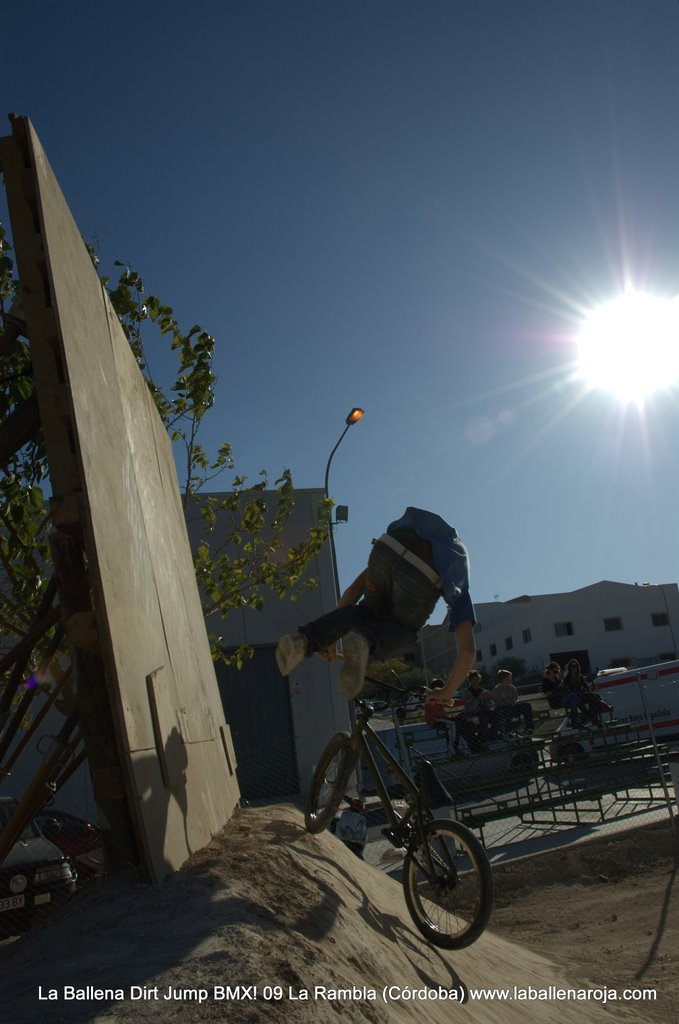 Ballena Dirt Jump BMX 2009 - BMX_09_0075.jpg