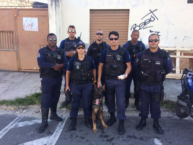 Unidade Canina da Guarda Municipal de Vila Velha  (ES) auxilia em detenção de suspeitos de tráfico.