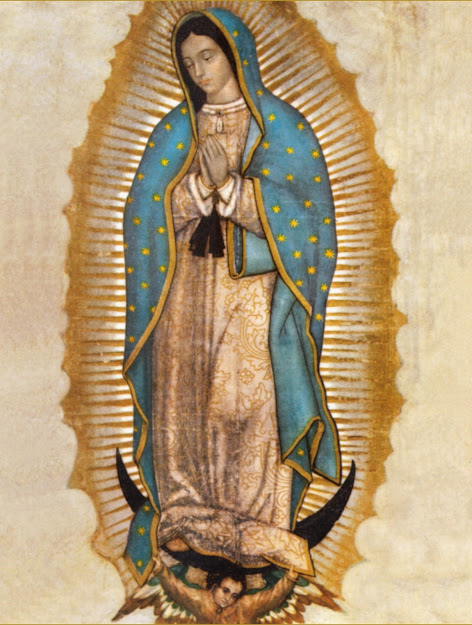 Amazing Facts About The Miraculous Image Of Our Lady Of Guadalupe