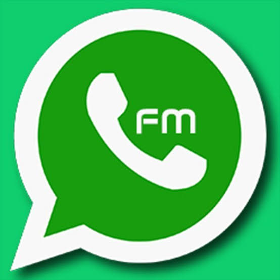 FM WhatsApp features [Download here]