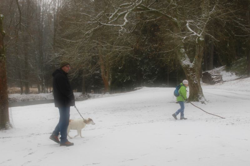 01. Januar 2016: Neujahrswanderung ins Waldnaabtal - IMG_1535.JPG