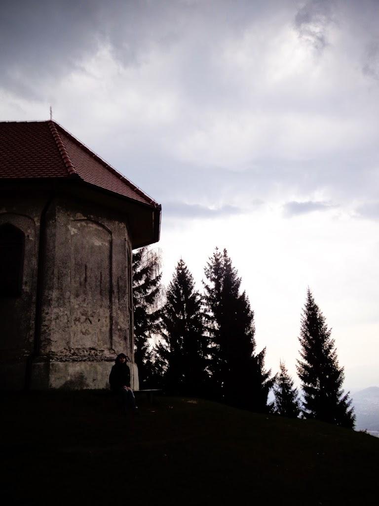 Osovnik - Vika-00769.jpg
