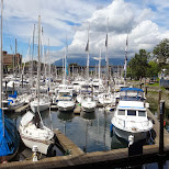 Vancouver yacht harbor at Granville Island in Vancouver, British Columbia, Canada