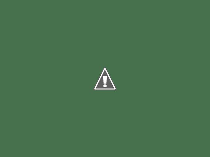 đầu kéo International máy Maxxforce 2010 Màu đen