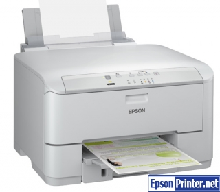 How to reset Epson WPM-4011 printer