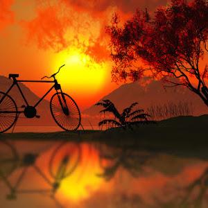 scene_vue_94_bicicleta_02__.jpg