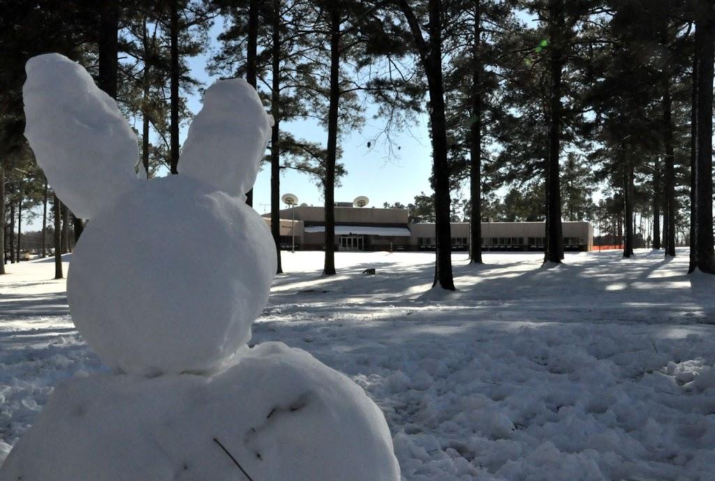 UACCH Snow Day 2011 - DSC_0037.JPG