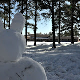 UACCH Snow Day 2011 - DSC_0037.JPG