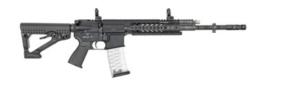 2017-01-11_RS556_assault rifle system_page3_image1