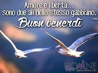 buon venerdi immagine con frase aforisma amore e liberta due ali dello stesso gabbiano.jpg