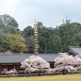 2014 Japan - Dag 8 - tom-SAM_0521-0026.JPG