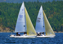 J/80s sailing offshore in Victoria, British Columbia, Canada