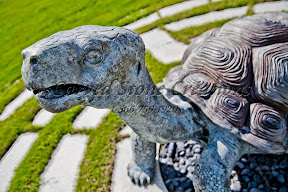 Animal, Bronze, Exterior, Showroom, Statuary
