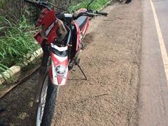 Árvore cai, atinge motoqueiro e deixa BR-163 bloqueada em Santarém