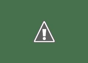 Боевые крысы
