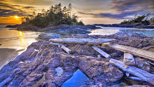 Pacific Rim National Park, Vancouver Island, British Columbia.jpg