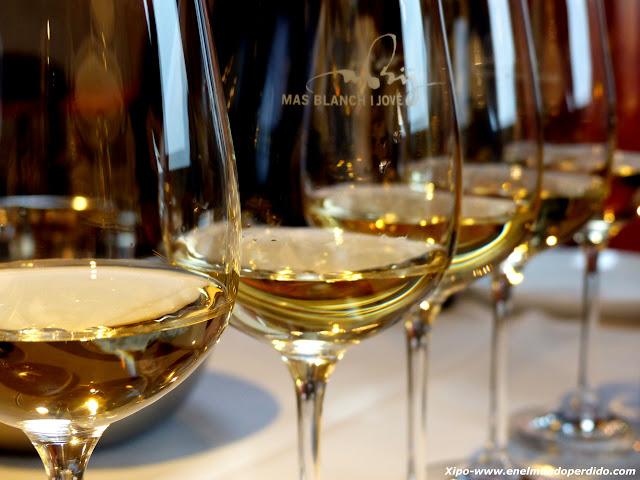 vinos-sao-mas-blanch-i-jove.JPG
