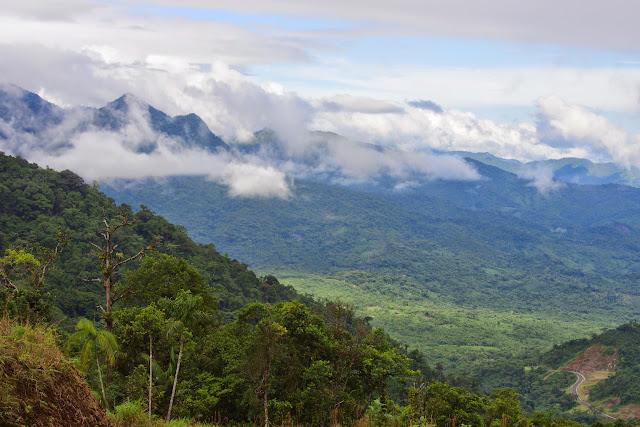 Route de Santa Fe à Guabal, 500 m (Veraguas, Panamá), 29 octobre 2014. Photo : J.-M. Gayman