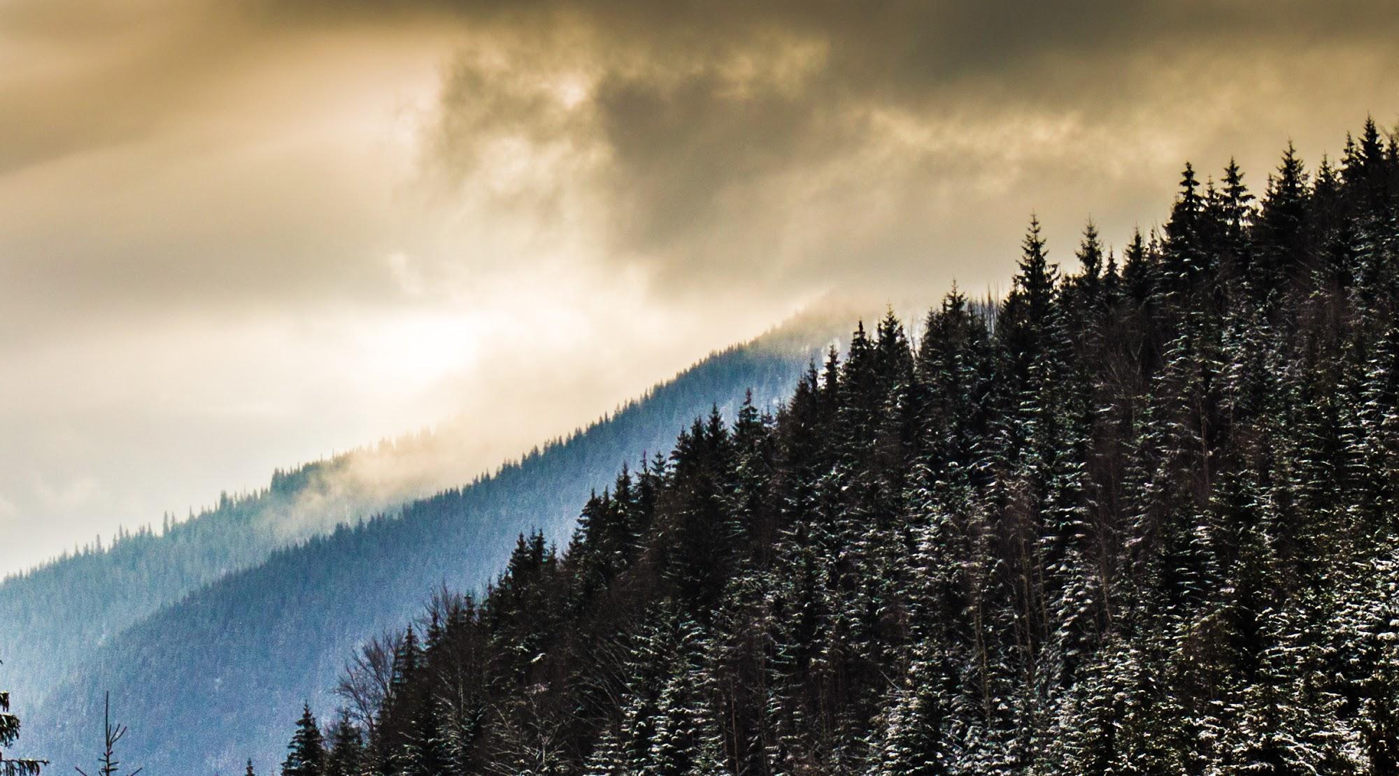 Хмари і туман Західні Горгани