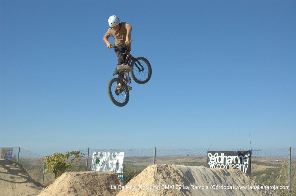 Ballena Dirt Jump BMX 2009 - BMX_09_0069.jpg
