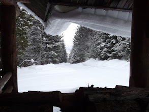 Photo: From the Trail shelter