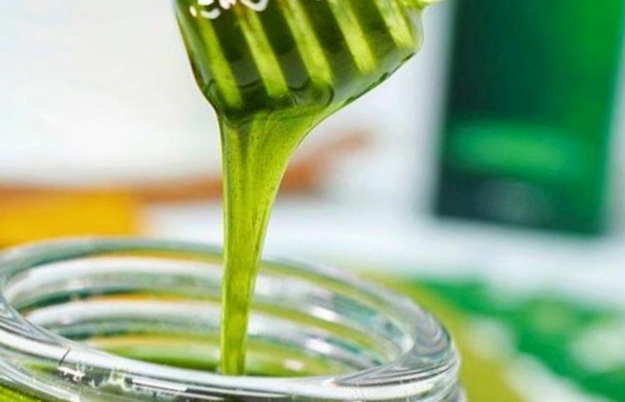 manfaat madu hijau