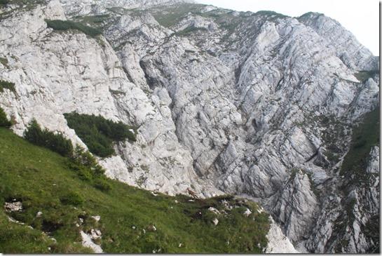 Балкани0 (174)