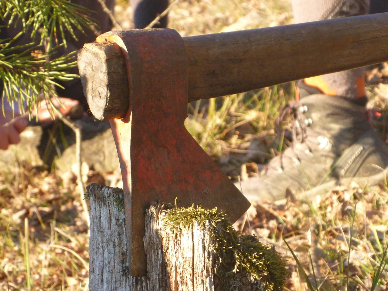 Sortida Castellterçol Raiers - P1000045.JPG