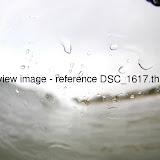 DSC_1617.thumb.jpg