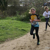 Cross de Saint Renan 2015