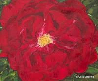 'Rose dunkelrot', Öl auf Leinwand, 55x65, 2002