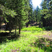 cannell_trail_IMG_1757.jpg