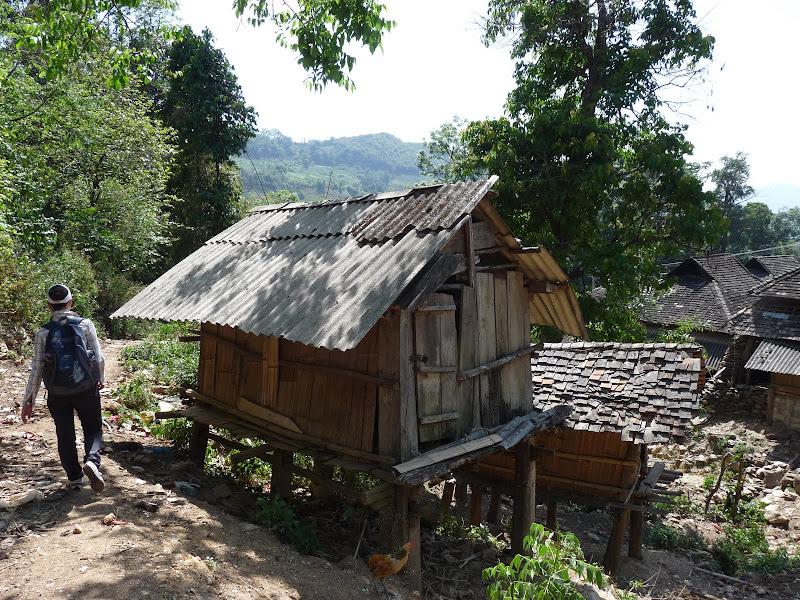 Chine: randonnée xishangbanna, région de Bada - Picture1%2B820.jpg