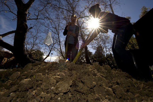 Researchers from the University of California, Irvine dig up soil samples. The UCI-led study found that soil integrates carbon far slower than thought, meaning the amount it's capable of absorbing from the atmosphere this century is much less than predicted by current Earth system models. Photo: Steve Zylius / UCI