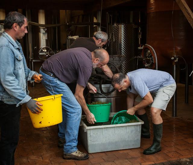 2013 vendanges du chardonnay - 2013%2B09%2B28%2BGuimbelot%2Bvendanges%2Bdu%2BChardonnay%2B142.jpg