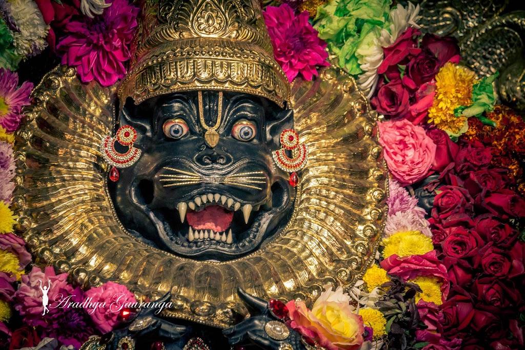 ISKCON Mayapur Deity Darshan 18 Jan 2017 (18)