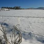 tn_lachaux-2010-12-54.jpg