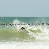 _DSC9565.thumb.jpg
