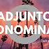 Língua Portuguesa: O que é Adjunto Adnominal