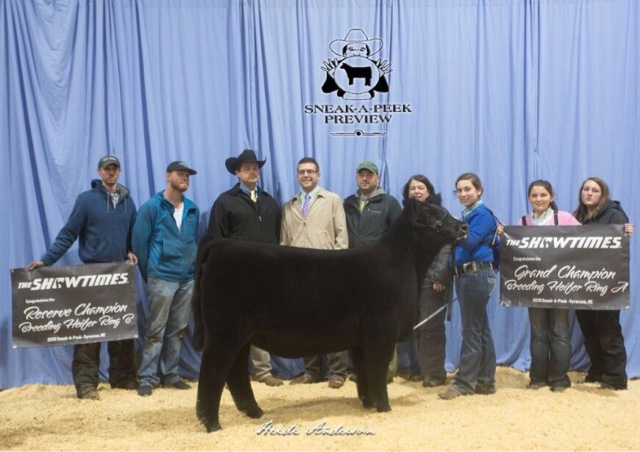 Rcc blog sneak a peak breeding heifer show for Rcc home show