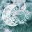 Jennifer Eames's profile photo