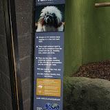Zoo Snooze 2015 - IMG_7301.JPG