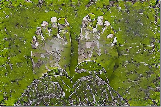 Moss Covered Granite Feet?