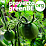 Proyecto GreenBE's profile photo