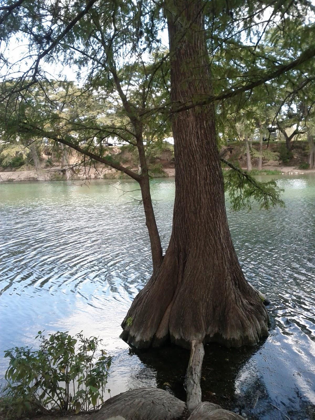 Fall Vacation 2012 - IMG_20121022_145158.jpg