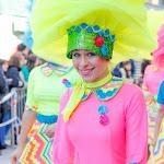CarnavaldeNavalmoral2015_293.jpg